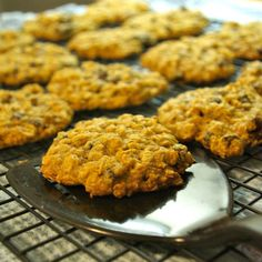 Pumpkin Oatmeal Chocolate Chip Cookies  vegan, plantbased, Earth Balance, Made Just Right