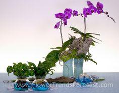 Aqua Culture Floral Trends for 2014 - International Floral Distributors - Beaux & Belles: An Event Planning Blog #floraltrends #flowertrends #aquaculture