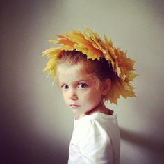 Fresh yellow maple leaf crown, By Kirsten Rickert kirstenrickert.com