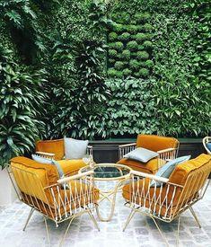Bastille And Sons (@bastilleandsons) on Instagram. Patiotuin met levende muur en rotan jaren vijftig tuinstoelen.