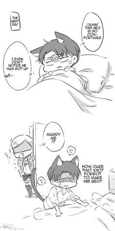 Erwin and neko Levi // AoT