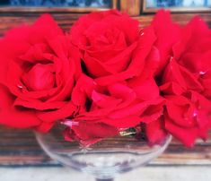 The Many Uses for Rose Petals | Jenn Campus Author Official