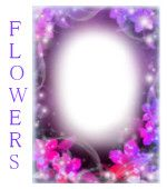 Add effects, add music and send your friend! Funny Photo Frames, New Photo Frame, Collage Photo Editor, Photo Editor Free, Free Frames, Borders And Frames, Flower Collage, Flower Frame, Collage Online