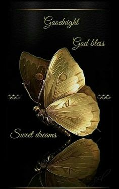 Wall Art HD Print Black and Gold Butterfly Poster Good Night Thoughts, Lovely Good Night, Beautiful Good Night Images, Good Night Prayer, Good Night Friends, Good Night Blessings, Good Night Wishes, Good Night Sweet Dreams, Good Morning Good Night