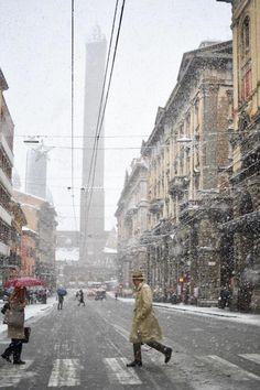 Bologna, 13 novembre 2017 (Massimo Paolone/LaPresse)