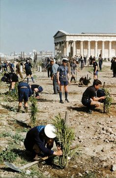 to February 1955 when the Boy Scouts and Sea Scouts of Athens and Attica planted oleanders in the area southwest of the Temple of Hephaistos, near the western entrance of our Agora excavations. Greece Pictures, Old Pictures, Old Photos, Vintage Photos, Greece History, As Time Goes By, Athens Greece, Boy Scouts, Far Away