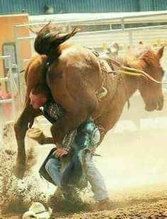 See Compilation of 42 Random Pics for You to Click! Rodeo Cowboys, Real Cowboys, Rodeo Rider, Bareback Riding, New Movie Posters, Cowboy And Cowgirl, Cowboy Pics, Cowgirl Style, Bull Riding