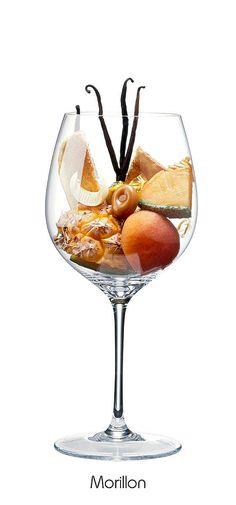 MORILLON Pineapple, apricot, melon, vanilla, toast, butter, caramel