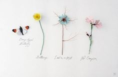 Fungi and Floral Sculptures Produced From Recycled Paper by Kate Kato
