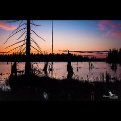 "Dawnellefayephotography ""The Colors of Sunset"", Lake Tapps. in travel Lake Tapps, Sunset Lake, Travel Wallpaper, Sunsets, Celestial, Architecture, Colors, Nature, Photography"