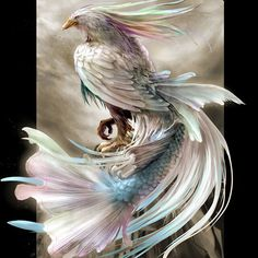 Beautiful #fantasy bird with fishtail #art