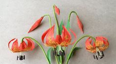 ABC TV | How To Make Michigan Lily Paper Flower From Crepe Paper - Craft...