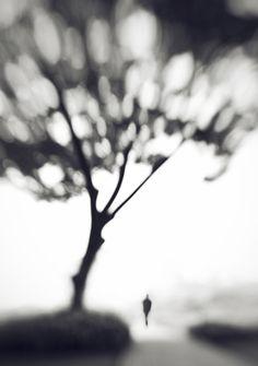 Upon Memory by Hengki Lee