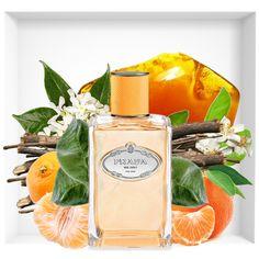 Les Infusions de Prada Mandarine new fragrance Perfume Scents, Fragrance Parfum, Perfume Bottles, Best Womens Perfume, Pheromone Perfume, Perfume Display, Best Fragrances, Cosmetics & Perfume, Perfume Collection