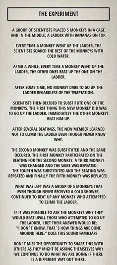The Monkey Experiment. Takeaway: Ask Why!