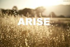 """""""Arise, shine, for your light has come, and the glory of the LORD rises upon you."""" ~ Isaiah 60:1"""