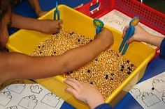 """Pick the crows out of the corn"" sensory bin activity"