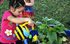 'Learn to Grow' garden project teaches better nutrition habits to 3,300 children