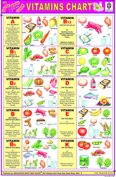 Indian Book Depot - Educational Charts Name Of Vegetables, Ideal Girl, Kids Learning, Charts, Vitamins, Students, Indian, Map, Education