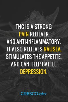 THC is a strong pain reliever and anti-inflammatory. It also relieves nausea, stimulates the appetite, and can help battle depression.(medical cannabis, marijuana) More info: