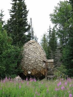 the pine cone house set in the woods with materials from nature