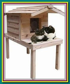 """(paid link) Explore TQ Fabulous's board """"Feral /cat house outdoors"""". see more ideas very nearly outdoor cat house outdoor, ... #cathouseoutdoor Feral Cat House, Feral Cats, Outdoor Cats, Bed Furniture, Pet Supplies, Pets, Outdoors, Explore, Link"""