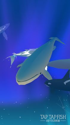 My Blue Whale:)  #taptapfish Download: http://onelink.to/jhe4sh