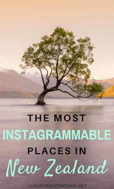 The Most Instagrammable Places In New Zealand. From North Island To South Island, The Ultimate Guide