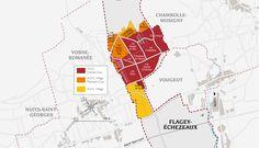 Echezeaux.   vins-bourgogne.fr