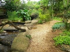bushveld garden ideas - Google Search