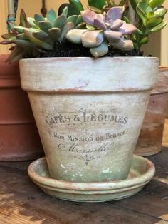 DIY Aged Terracotta Pot - Amy Howard At Home