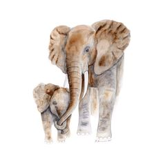 This watercolor of the mom and baby elephant showcases the love between mother and child. The grey and white giclee print is a beautiful home décor or can be paired nicely with other African Animal pr