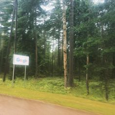 @google #hamina #finland in the middle of #forest