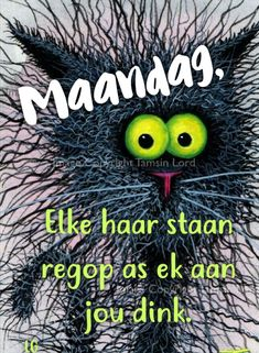 Funny Animal Memes, Funny Animals, Goeie Nag, Goeie More, Afrikaans Quotes, Monday Quotes, Friday Humor, Good Morning, Van