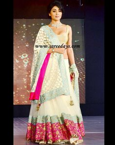 Cream net/lace lehenga with broad bold borders and fit gold blouse