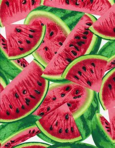 Watermelons Farm Fresh Fruits Fruit Cotton Fabric Print (fruit-c1137-multi)