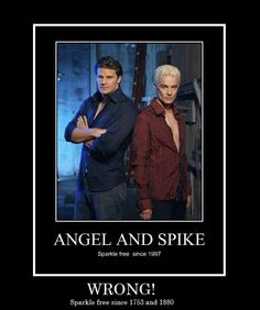 341 Best Buffy Stuff Images Joss Whedon Vampires Buffy The
