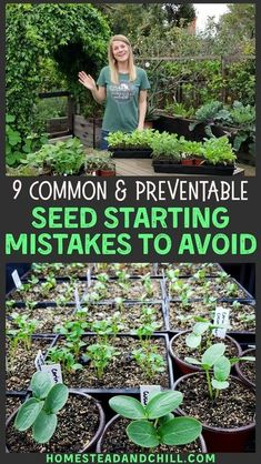 """Too much water. Too little light. Bad timing... When new gardeners stray from the best practices of seed starting (""""make mistakes"""") seeds may not sprout, seedlings can be weak or unhealthy, or plants could even die. But don't worry! All of those things are easy to prevent or fix - once you know the most common seed starting mistakes to avoid. #seedstarting #gardening #gardentips #growyourown Home Vegetable Garden, Fruit Garden, Veggie Gardens, Vegetable Garden Planning, Indoor Vegetable Gardening, Backyard Vegetable Gardens, Mini Gardens, Container Gardening Vegetables, Herb Gardening"""