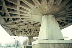 A Nervi Structure