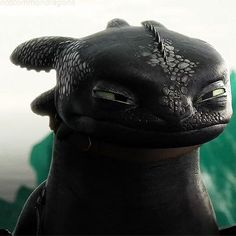 Immagine di gif, toothless, and httyd 2 Toothless And Stitch, Toothless Dragon, Hiccup And Toothless, Httyd 2, Dreamworks Dragons, Dreamworks Animation, Disney And Dreamworks, Dragon Rider, Dragon 2