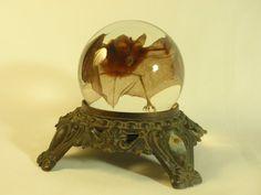 Preserved Wet Specimen Bat In Glass Sphere On Ornate Base