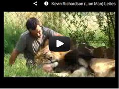 Kevin Richardson, Lion Man. Watch here: http://awesomeanimals001.blogspot.co.il/2013/01/kevin-richardson-lion-man.html