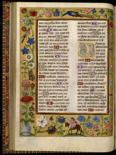Flemish Psalter — Viewer — World Digital Library