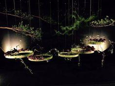Singapore Garden Festival 2016 Hideyuki Niwa Gold award !!