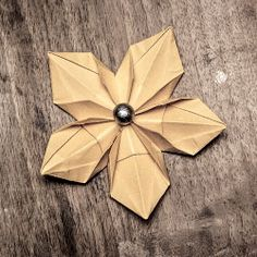 Learn how to make cute paper flowers.