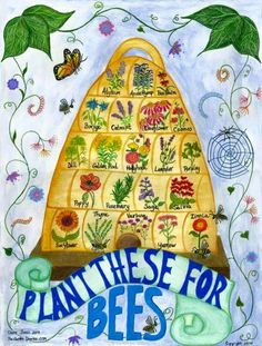 Bee Skep Poster for flowers to plant to attract bees- front bee/butterfly garden. Bee Skep, Save The Bees, Bee Happy, Bees Knees, Queen Bees, Bee Keeping, Garden Planning, Garden Projects, Perennials