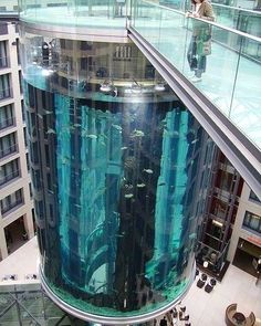 Elevator aquarium, The Aquadom at the Radisson Blu in Berlin, Germany. Check out the tiny little ladder to get into the tank.