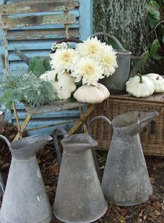 grey and white in the garden - Sharon Santoni