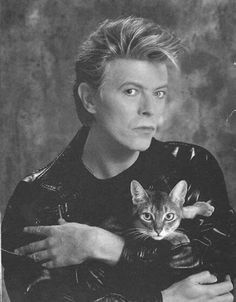 4. David Bowie | Community Post: Cool For Cats: 20 Musicians Chilling With Their Feline Friends