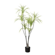 The decorative and original silhouette of this dracaena brings us to relaxation and the desire to travel! Combine it with other artificial plants with a tropical flair to bring a colorful touch to your decor. Dracaena Plant, Travellers Palm, Green Plants, Artificial Plants, Green Leaves, Decoration, Houseplants, Indoor Plants, Exotic